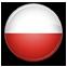 POLISH     język polski